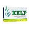 Olimp Kelp